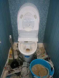 札幌市 北区 屯田 トイレ詰まり修理 汚水の汲み取り点検