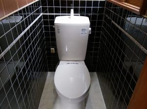 地下トラップとは? トイレ の 異物 詰まり  札幌市 南区 トイレ設置完了①